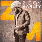 Ziggy Marley de Ziggy Marley