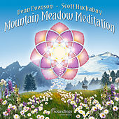 Mountain Meadow Meditation de Various Artists