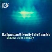 Shadow, Echo, Memory de Various Artists