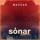 Sónar Selection di Various Artists