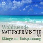 Wohltuende Naturgeräusche Pur - Klänge zur Entspannung von Torsten Abrolat
