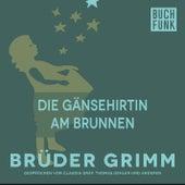Die Gänsehirtin am Brunnen by Brüder Grimm