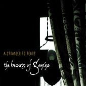 A Stranger to Tears by The Beauty Of Gemina