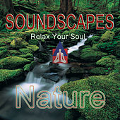 Soundscapes - Nature by Various Artists