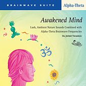 Awakened Mind de Dr. Jeffrey Thompson