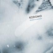 Frozen in Motion by Kodomo