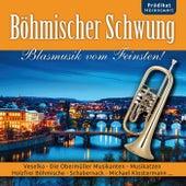 Böhmischer Schwung de Various Artists