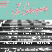 Dollar Store Nation by Jo Serrapere
