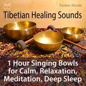 Tibetian Healing Sounds - 1 Hour Singing Bowls for Calm, Relaxation, Meditation, Deep Sleep von Torsten Abrolat