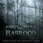 Bosque de Niebla Barroco de Ensamble Galante