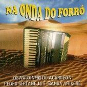Na Onda do Forró by Various Artists