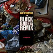 Indestructible (The Black Madonna remix) by Robyn