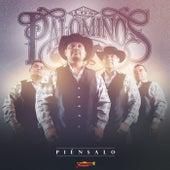 Piénsalo de Los Palominos