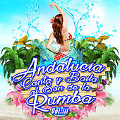 Andalucia Canta y Baila al Son de la Rumba Vol. 3 by Various Artists