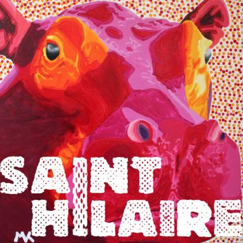 Saint Hilaire de Saint Hilaire