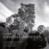 Hummel: Sonatas & Variations by Various Artists