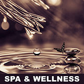 Spa & Wellness – Gentle  Music for Massage, Hot Stone Massage, Classic Massage, Full of Peacefull Nature Sounds for Deep Relax, Stress Relief After Heavy Day de Massage Tribe