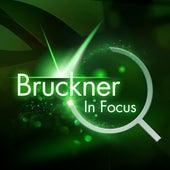 Bruckner - In Focus by Various Artists