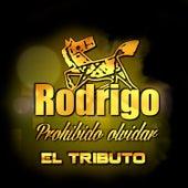 Rodrigo Prohibido Olvidar: El Tributo by Various Artists