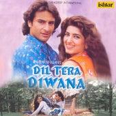 Dil Tera Diwana (Original Motion Picture Soundtrack) de Various Artists