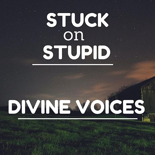 Divine Voices by Stuck oN Stupid