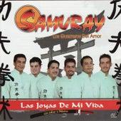 Las Joyas De Mi Vida by Samuray