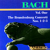 Best Of Bach: Jesu, Joy of Man's Desiring, Brandenburg Concerto No. 3, Air On The G String And More by Various Artists
