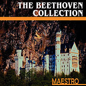 The Beethoven Collection by Herbert Waltl