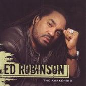 The Awakening by Ed Robinson