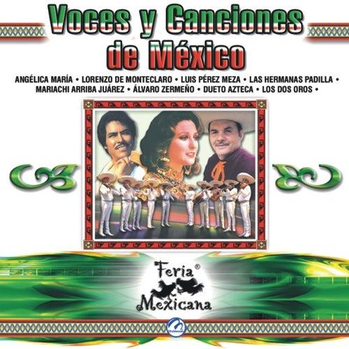 Voces Y Canciones De Mexico  Feria Mexicana by Various Artists