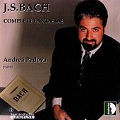 Bach: Complete Fantasias by Andrea Padova