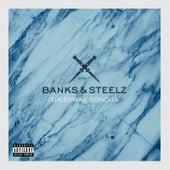 Speedway Sonora by Banks & Steelz