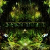 Creaking Rhythms Valley - EP von Various Artists