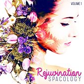 SpaCology: Rejuvination, Vol. 1 by Various Artists
