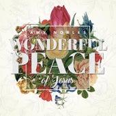 Wonderful Peace of Jesus - Single by Amy Nobles