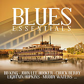 Blues Essentials Vol. 1 von Various Artists