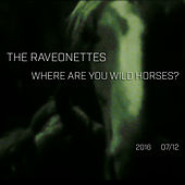 Where Are You Wild Horses by The Raveonettes