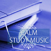 Calm Study Music - Top 50 Songs for Concentration, Deep Brain Stimulation and Exam Preparation by Study Music