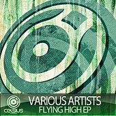 Flying High EP by Various Artists