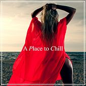 A Place to Chill by Various Artists
