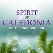 Spirit of Caledonia: The Celtic Music Collection di Various Artists