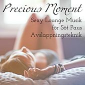 Precious Moment - Sexy Soft Chillout Lounge Musik för Söt Paus Avslappningsteknik by Various Artists