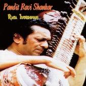 Raga Jogeshwari von Ravi Shankar