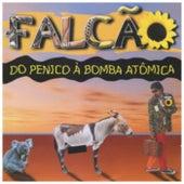 Do Pinico à Bomba Atomica by Falcão
