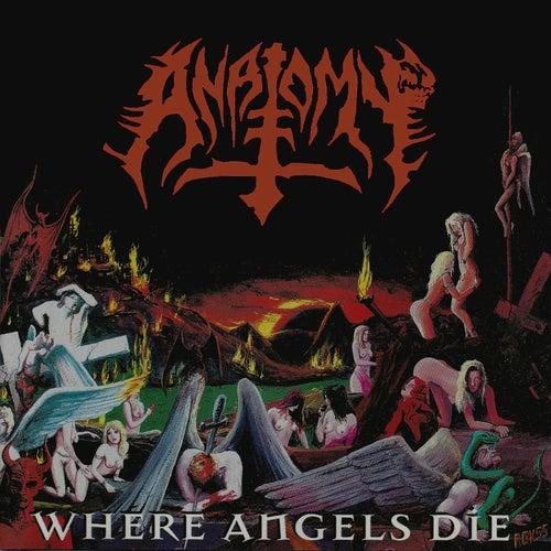 Where Angels Die by Anatomy