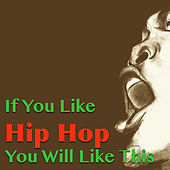 If You Like Hip Hop You Will Like This von Various Artists