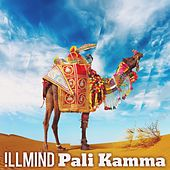 Pali Kamma - Single by Illmind