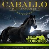 Club Corridos Presenta: Caballo Prieto Azabache by Various Artists