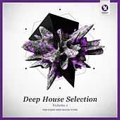 Armada Deep House Selection, Vol. 1 (The Finest Deep House Tunes) de Various Artists
