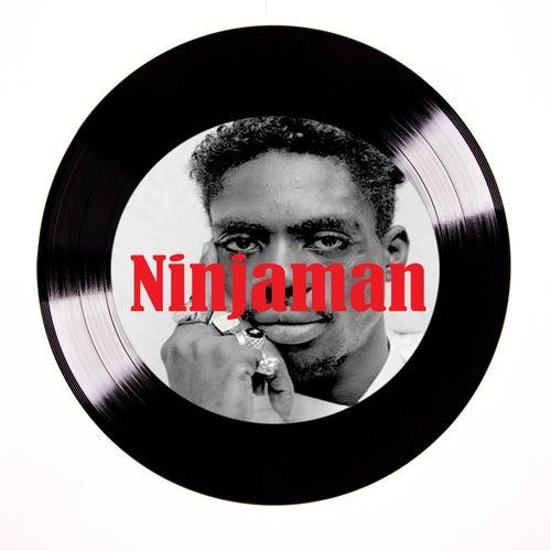 A Ninja (raw) by Ninjaman